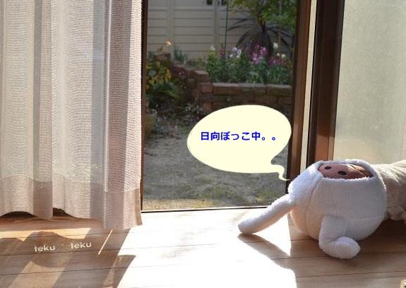 027_20131121215150fb8.jpg