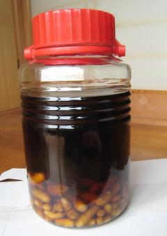 ウコン酒(ブランデー)