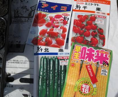 苗用種蒔きⅡ (2)