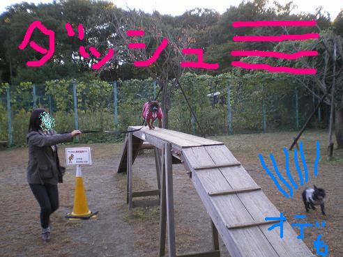 森林公園 雫 雷電 こっちもよ2