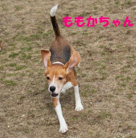 IMG_3879-1.jpg