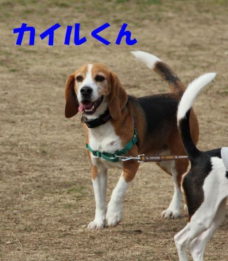 IMG_3920-1.jpg
