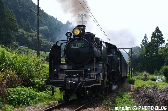 DSC_8062.jpg