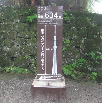 nikko-03.jpg