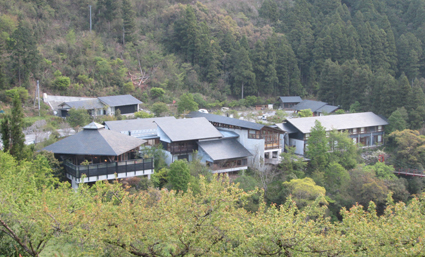 tosayama3.jpg