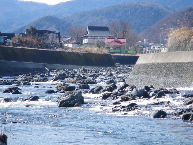 20120221桂下見7