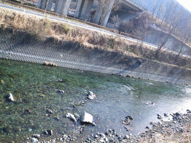 20120221桂下見19