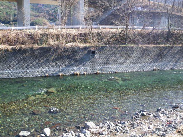20120221桂下見20