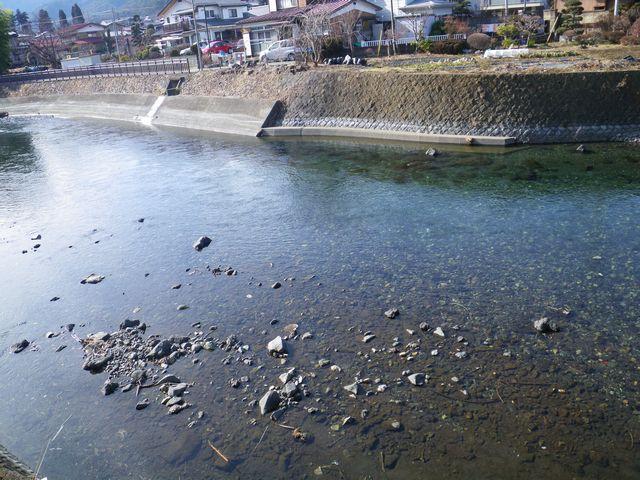 20120221桂下見35