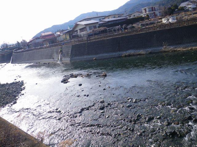 20120221桂下見45