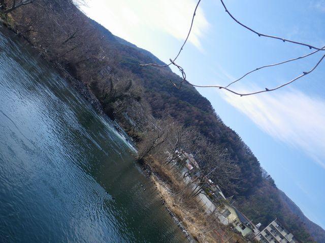 20120221桂下見53