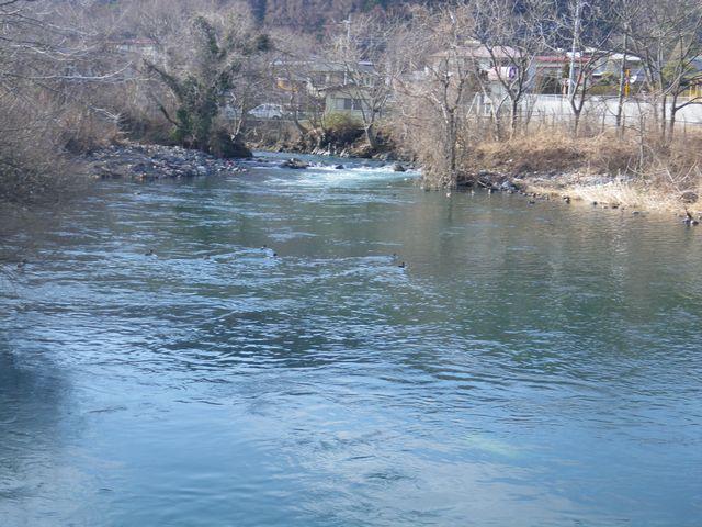 20120221桂下見55