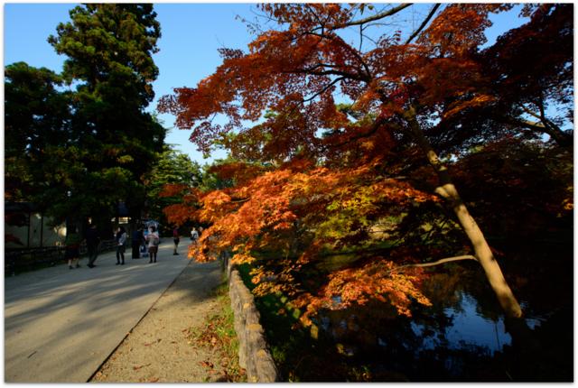 青森県 弘前市 弘前城 弘前公園 弘前城菊と紅葉まつり 観光