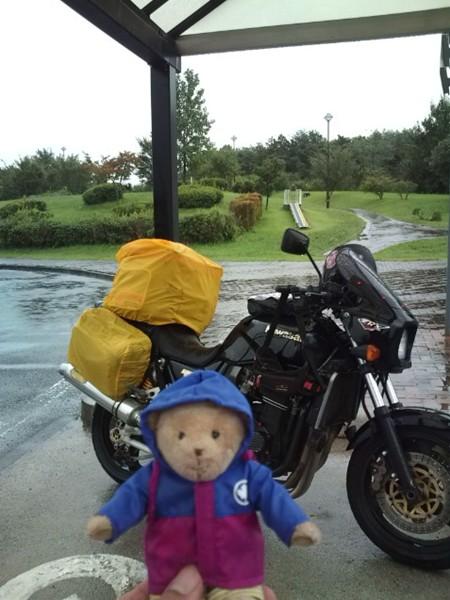 雨 降りだした