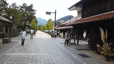 Image4651.jpg