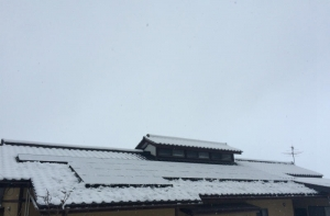 141213_再積雪