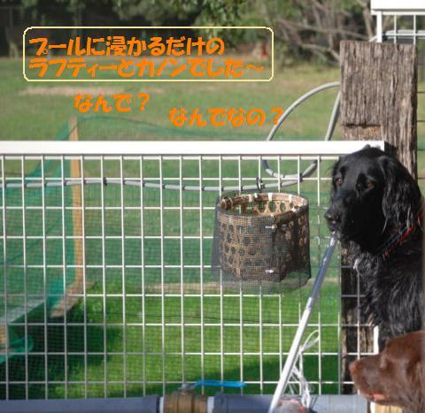 003_convert_20101027213516.jpg