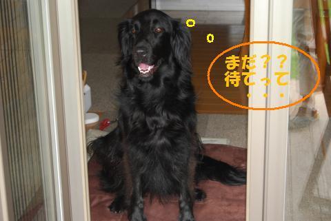 004_convert_20100714132705.jpg