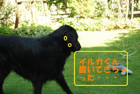 009_convert_20100722221648.jpg