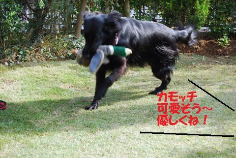 010_convert_20101116181349.jpg