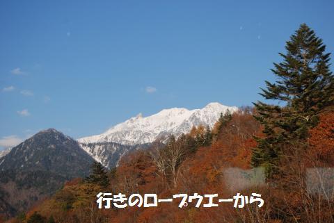 096_convert_20101109194558.jpg