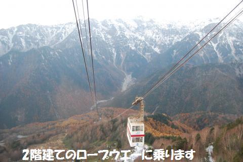 181_convert_20101109195639.jpg
