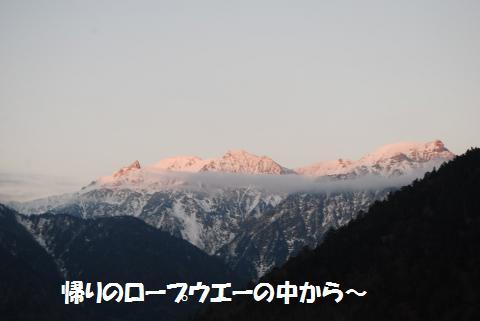 183_convert_20101109195732.jpg