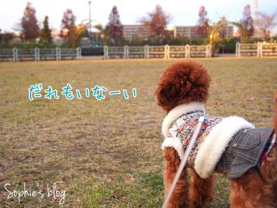 fc2blog_201411271839066fa.jpg