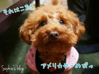 fc2blog_20141128180153077.jpg