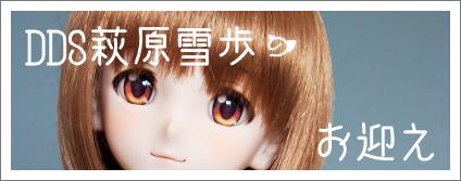 yukihob.jpg