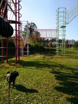 mitomipark3.jpg