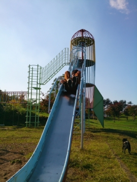 mitomipark4.jpg