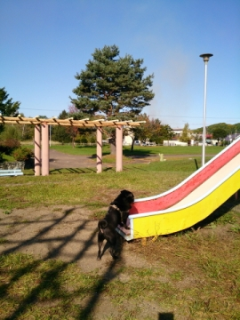 mitomipark7.jpg