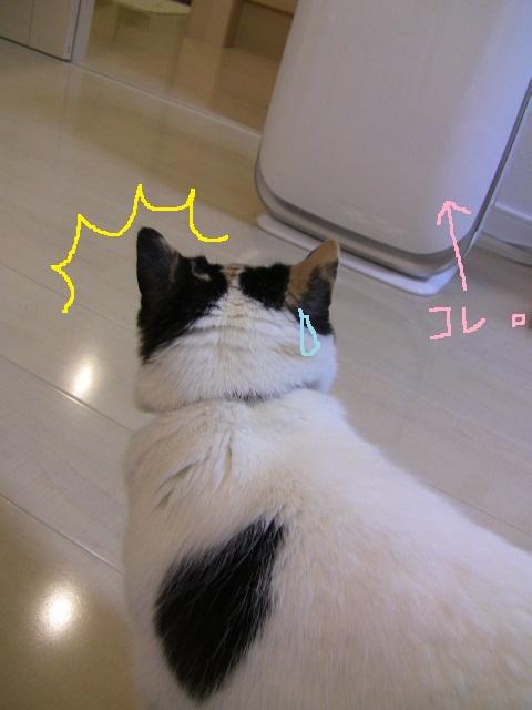 IMG_4048修正済み