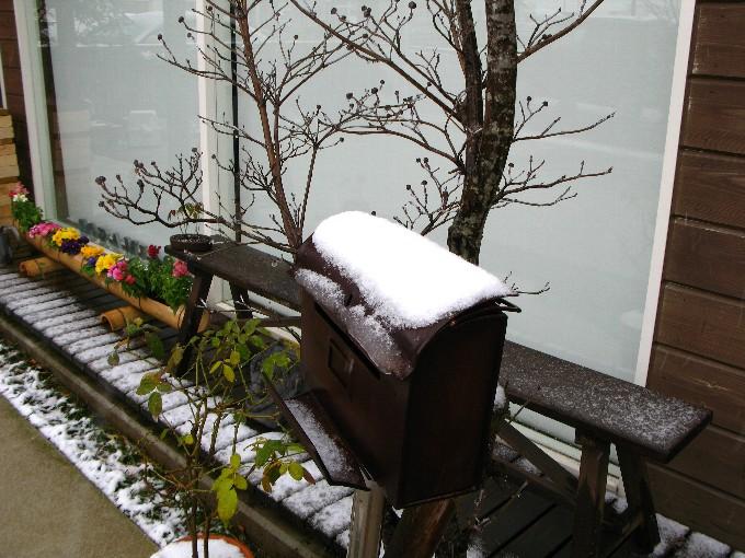 2011-2yukigeshiki.jpg