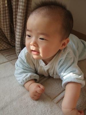 2011_02010026.jpg