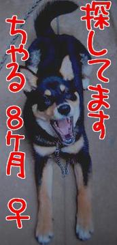 2010_0712_1.jpg