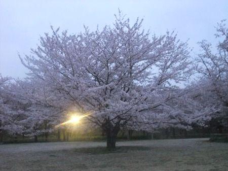 2012_0413_19.jpg