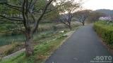 下賀茂温泉湯の花(5)