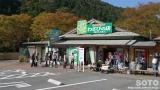 天城越え(2)