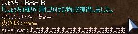 20100905_4.jpg