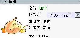 20100918_3_20100918063449.jpg