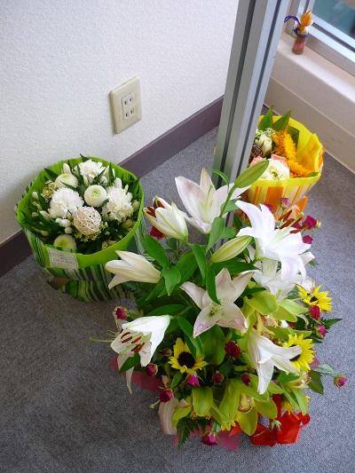 「やわらかなたましい」花