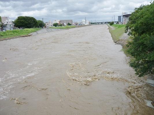 鴨川‐濁流