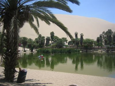 砂漠のオアシスペルー