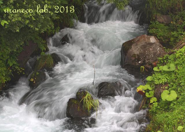 8月20日渓流