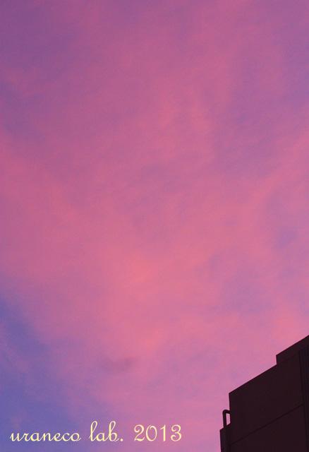 9月16日台風後の夕暮れ4