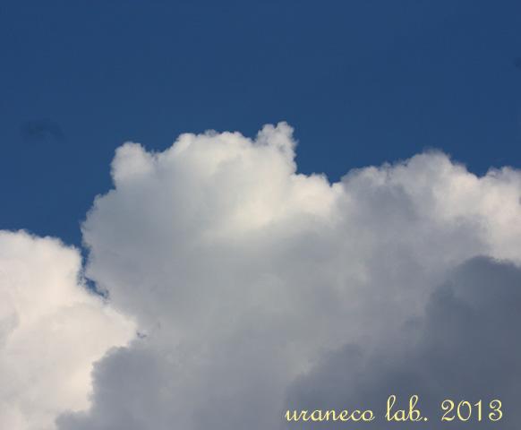 12月20日猫雲