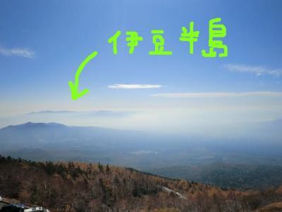 CIMG6441_convert_20111031010032.jpg