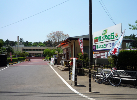 20110519-3.jpg